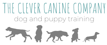 The Clever Canine Company